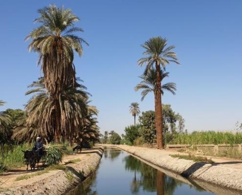Naturpfade am Nil